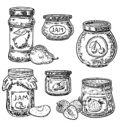 Ink hand drawn style fruit jam jar icon set vector