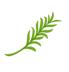 minimal branch with green leaves vector image vector image