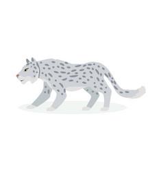 snow leopard cartoon flat vector image
