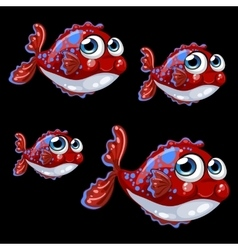 Sweetheart spotted shy fish on a black background vector