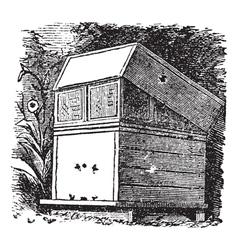 Beehive vintage engraving vector image