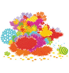 Sea snail and corals vector