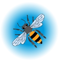 Isolated bee icon vector