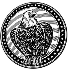 american eagle usa natioal symbol fourth july vector image