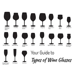 Hand drawn isolated wine glasses vector