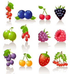 set of berry icons vector image
