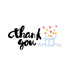 thank you lettering hand drawn vector image vector image