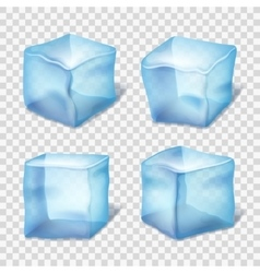Transparent blue ice cubes in plaid background vector image