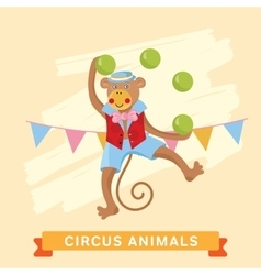 Circus monkey animal series vector