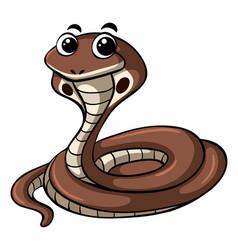 Cobra snake on white background vector