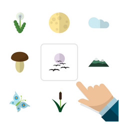 Flat icon ecology set of monarch peak floral and vector
