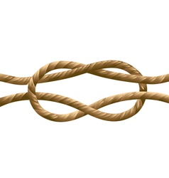 Marine knot vector