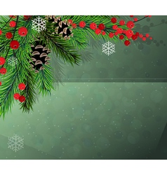 Red berries fir tree and cones vector image vector image