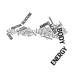 Energy how does my body get it and how does it vector