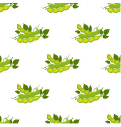 Seamless pattern of soybeans flat style vector
