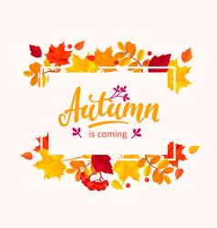 Autumn is coming banner with autumn leaves frame vector