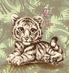 baby tiger over vector image vector image