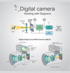 Digital camera working with diagrams vector