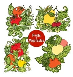 Ornamental fruits and vegetables compositions set vector