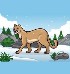 Cartoon of cougar in the snowy mountain vector