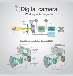 Digital camera working with diagrams vector