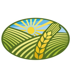 Farming Wheat Symbol vector image
