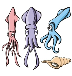 Squid cartoons vector