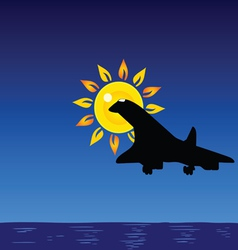 Plane and sun and sea vector