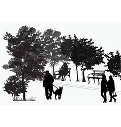 people walk in the park vector image