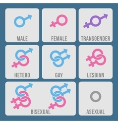 Gender and sexual orientation color icons vector