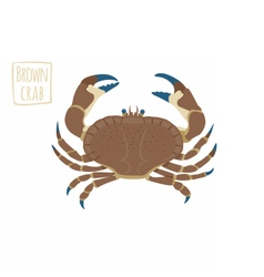 Brown crab cartoon vector image