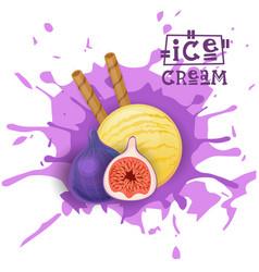 ice cream fig ball fruit dessert choose your taste vector image vector image