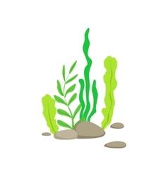 Set of different bottom underwater algae growing vector