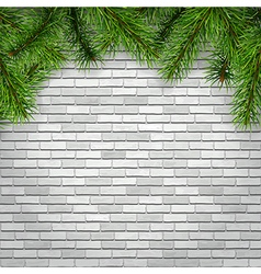 Fir tree branches on a white brick wall background vector