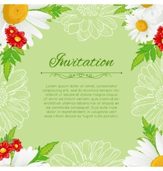 floral background with white chamomiles vector image vector image