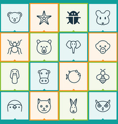 Zoology icons set collection of kitten marsupial vector