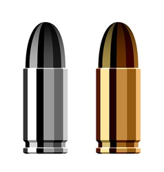 Weapon gun bullet cartridge vector
