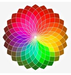 Color flower wheel vector image