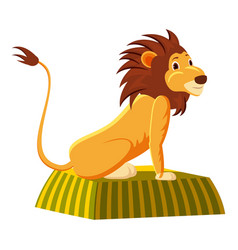 circus lion icon cartoon style vector image vector image
