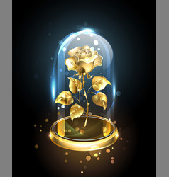 Gold rose under a glass dome vector