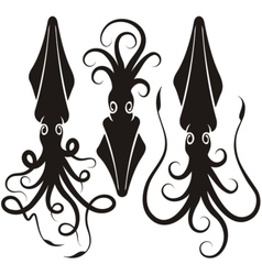 Squid silhouettes vector