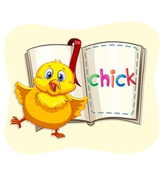 Little chick and a book vector