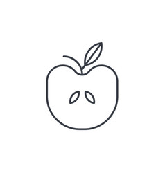apple with thin line icon linear symbol vector image