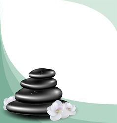 Background with spa stones and white flower vector image vector image