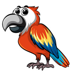 Colorful parrot on white background vector