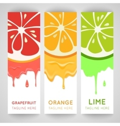 Three bright banner with stylized citrus fruit and vector image