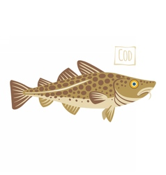 Cod cartoon vector