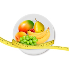 Diet meal fruit vector