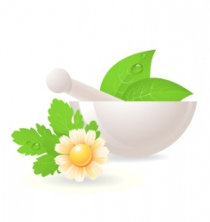 Mortar with herbs and chamomile vector