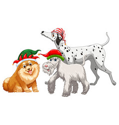 Christmas theme with three dogs in party hat vector